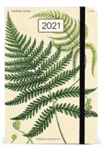 岐阜市花屋 グリーンヴェール CAVALLINI カレンダー サンフランシスコ